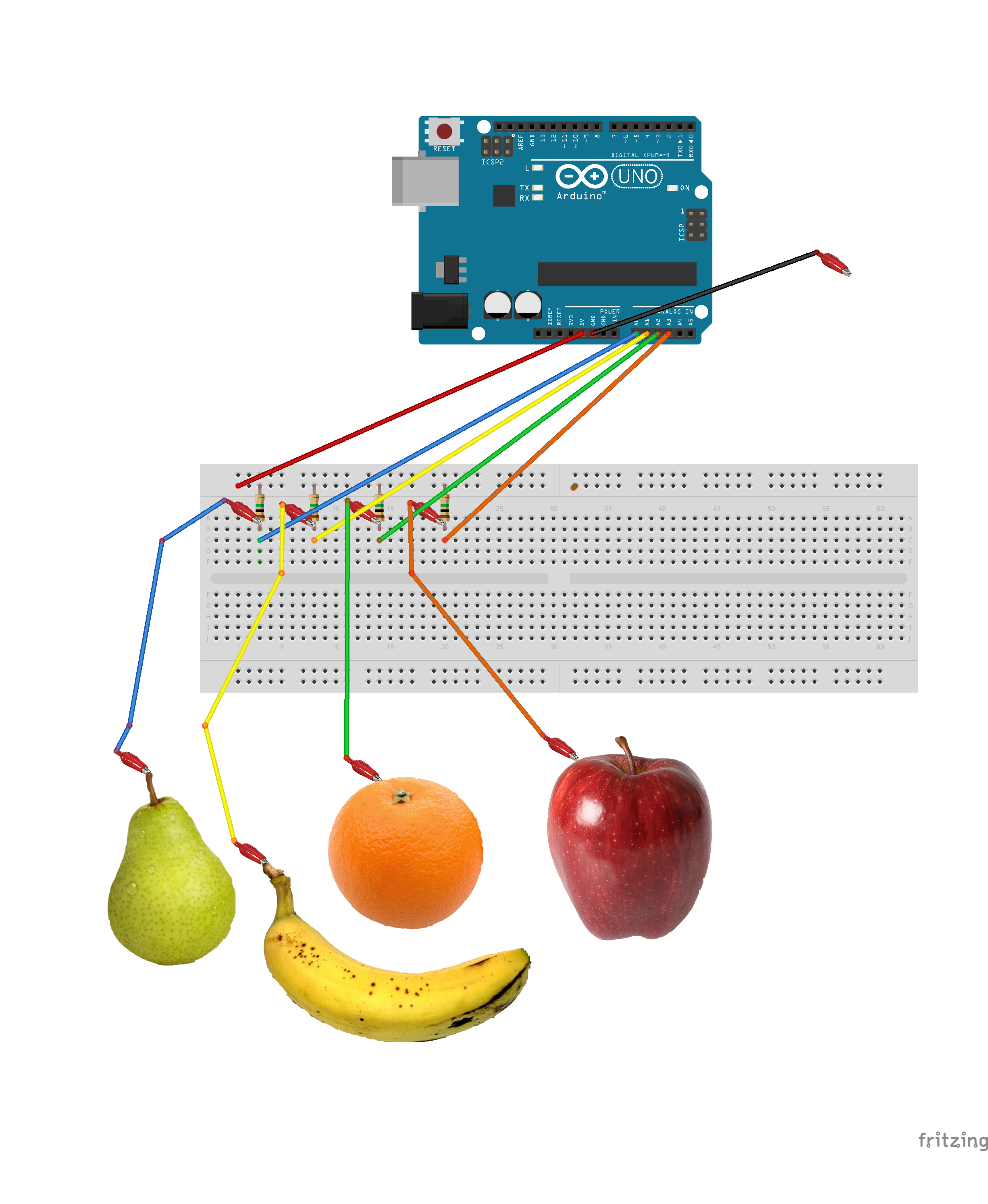 esquema-midi-frutas